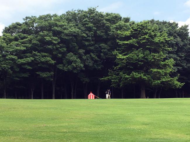 20170706森林公園01